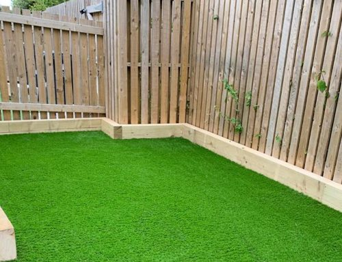 Artificial Grass Garden – North Wales